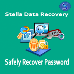 Get all kind of Password recovery software from Stella Data